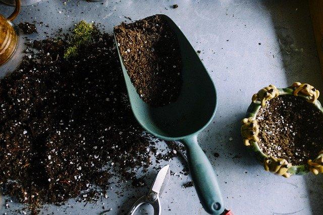 5 Best Gardening Services in Montreal