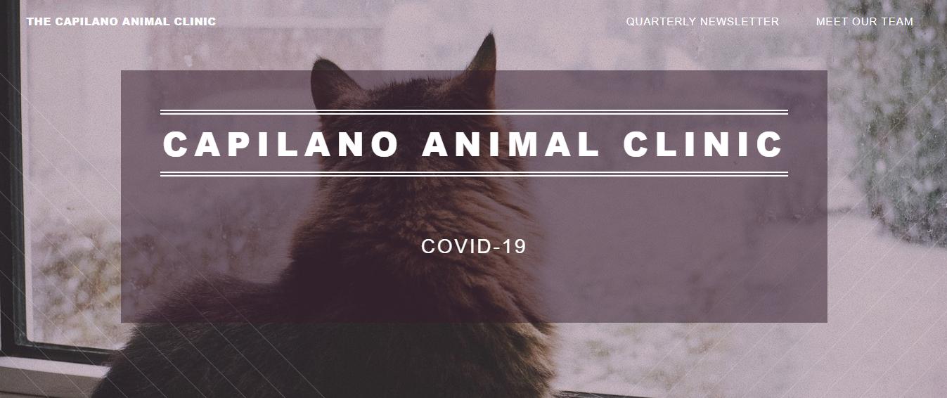Capilano Animal Clinic