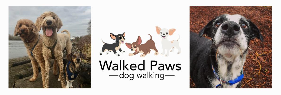 vancouver dog walker