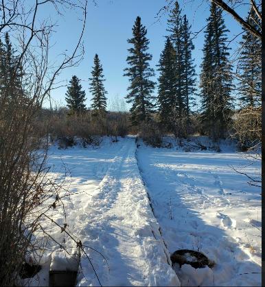 calgary hiking trails