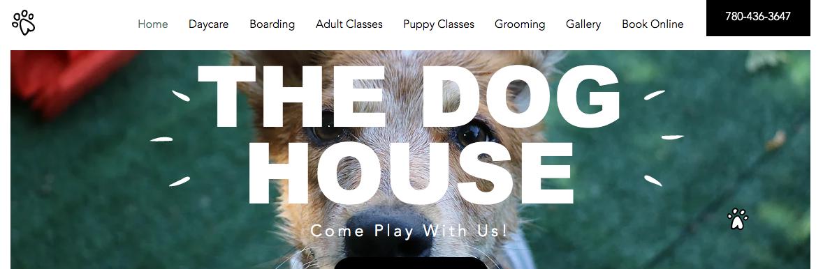 pet care centres edmonton
