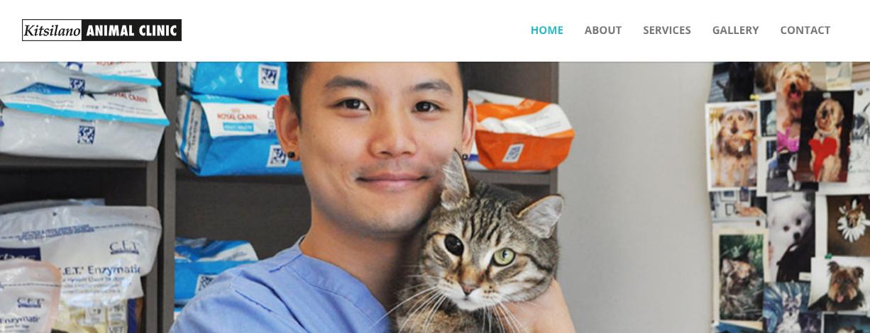 best veterinarians in vancouver