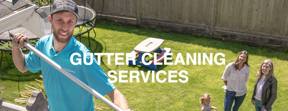 hamilton gutter maintenance services