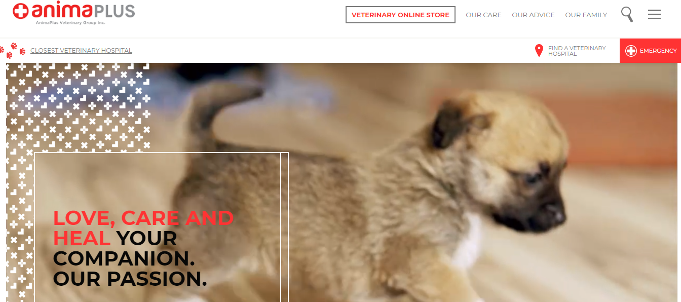 Clinique vétérinaire Anima-Plus Neufchâtel
