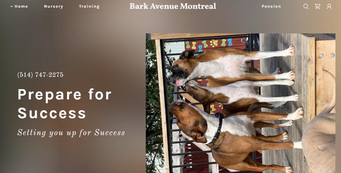 Bark Avenue Montreal