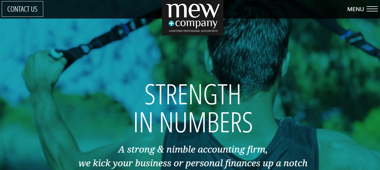 Mew and Company Chartered Professional Accountants