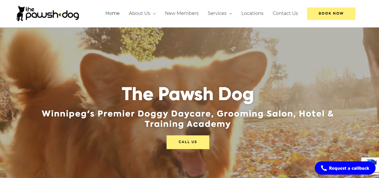 The Pawsh Dog Inc.