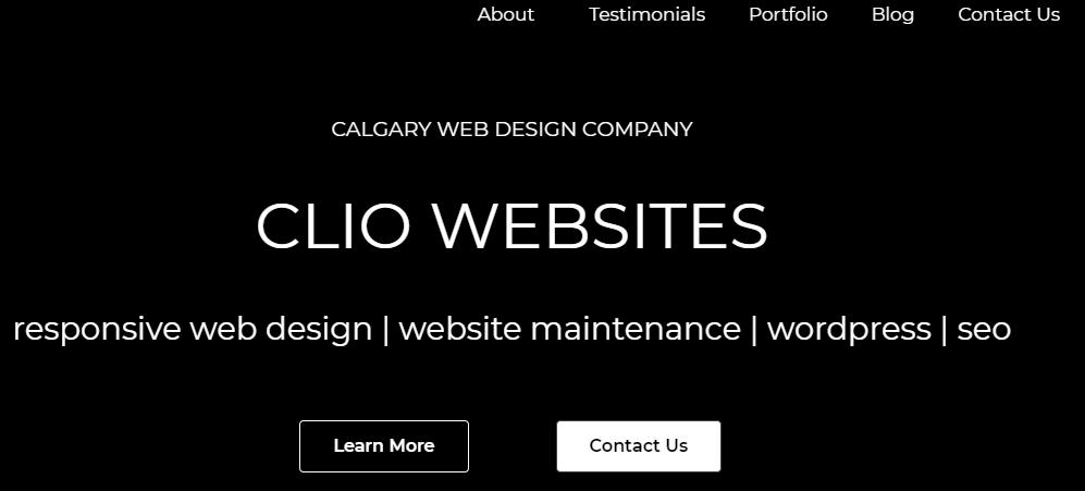 Clio Websites