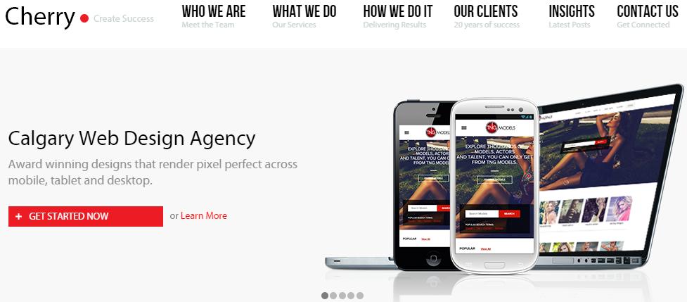 Red Cherry Calgary Web Design